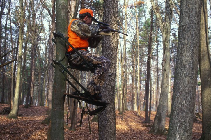hunter-holds-his-eye-to-the-scope-of-his-gun-while-sitting-on-tree-725x481