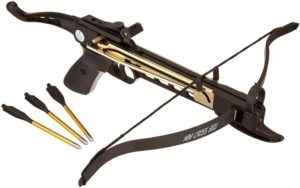 80 lbs Crossbow Pistol by Martial Arts
