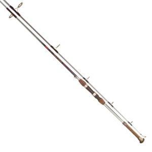 surf casting rod