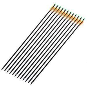 ANTSIR 12Pcs/lot Fiberglass Arrow