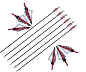 Huntingdoor Adult Carbon Arrows 30-Inch Hunting/Target Practice Archery Arrows